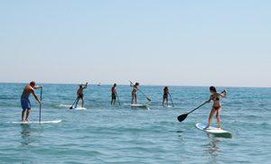 Alquiler de tablas de Paddle Surf